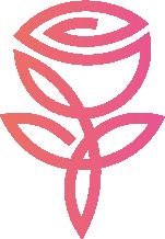 jd roses preservadas