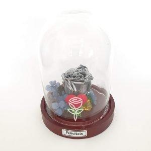rosa preservada plata con campana barcelona