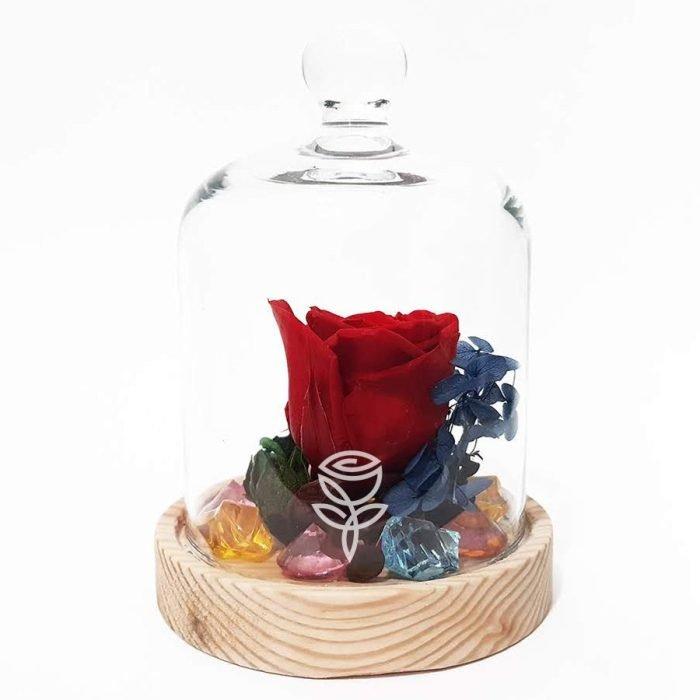 rosa preservada roja con campana barcelona