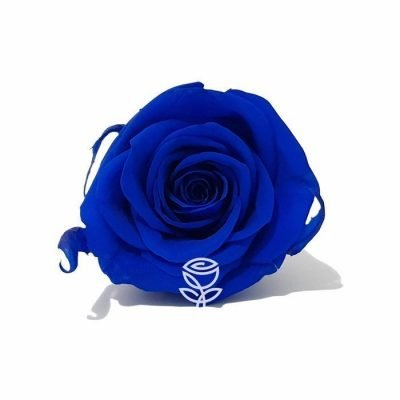 rosa preservada azul barcelona