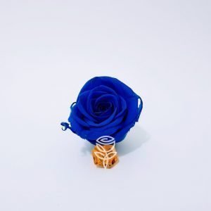 rosa eterna azul barcelona
