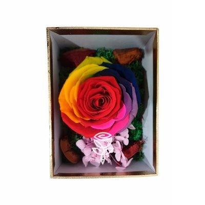 Rosa Preservada Arcoíris en Caja Pequeña