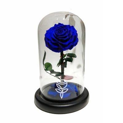 Rosa Preservada Azul con Tallo en Campana