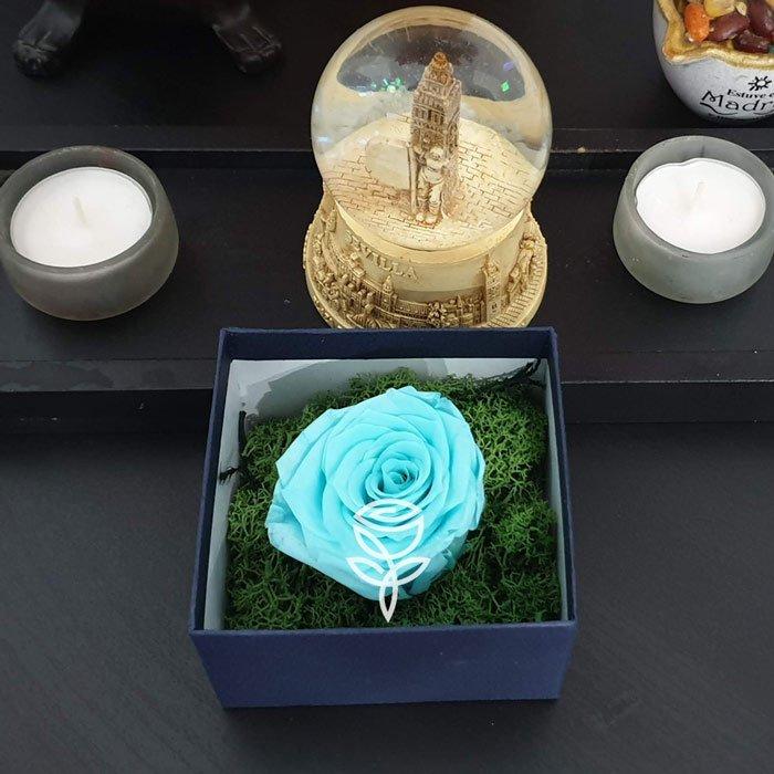 rosa eterna turquesa en caja de carton