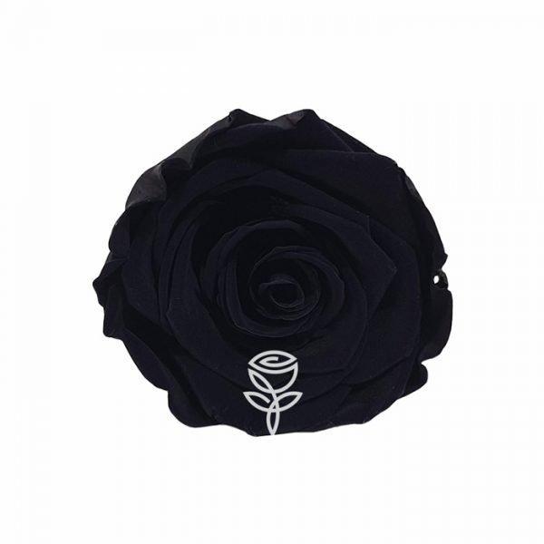 rosa preservada negra barcelona