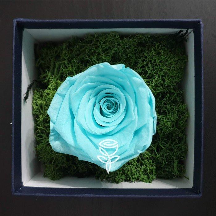 rosa eterna turquesa en caja decorada