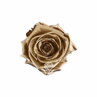 rosa preservada oro en barcelona