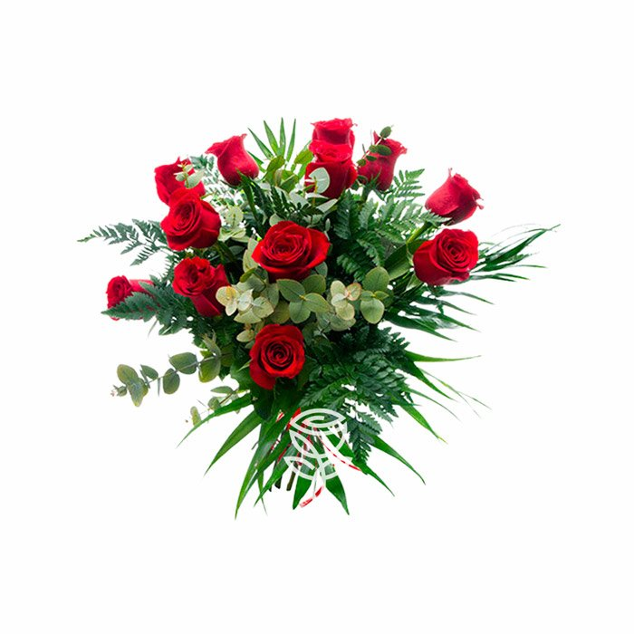 ramo de 12 rosas rojas ecuatorianas