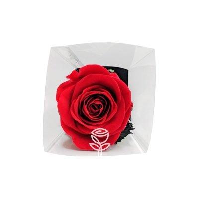 Rosa Preservada Roja con Tallo LUX